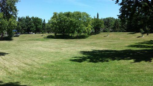 Bancroft Meadows