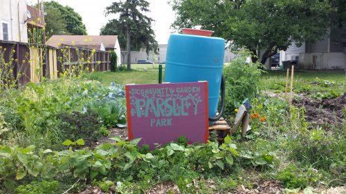 Parsley Park Community Garden, 323 Buchanan St NE