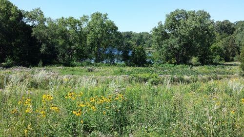 Brownie Lake Park