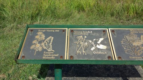 Interpretive Signs Show Flora and Fauna