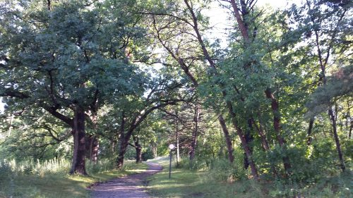 Trailhead on Wayzata Boulevard Just East of Theodore Wirth Parkway