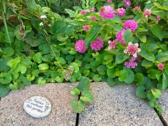 Faeries enchant this garden engraved on a rock