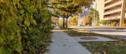 Sidewalk Fall