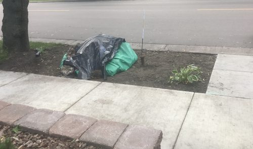 Narrow strip of dirt between sidewalk and street, with a large pile covered in tarp