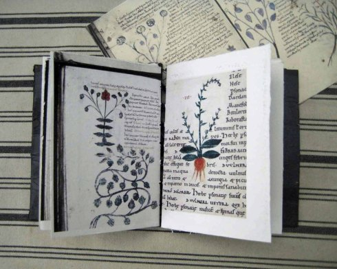 Book Arts Modestly