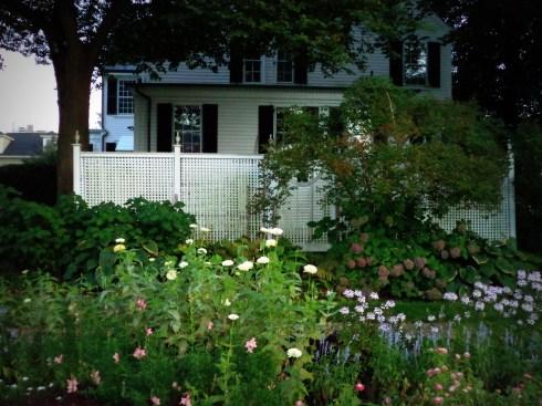 Fences 047