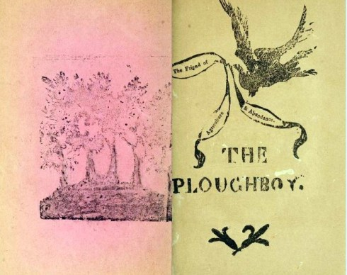 Cook Ploughboy Prints