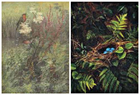 Fidelia Bridges Songbird and Ferns