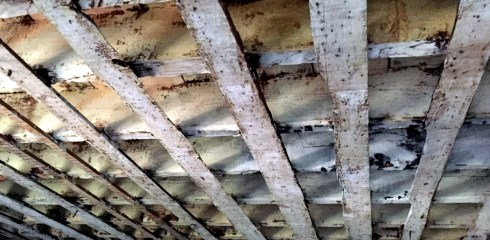 Restoration Ceiling