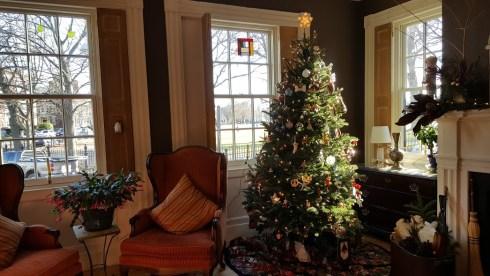 christmas-in-salem-tree