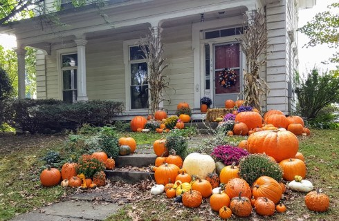 Deerfield Pumpkins