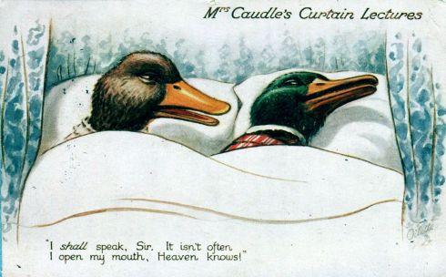 Curtain Ducks