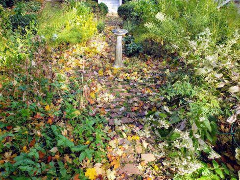 Garden October 2018