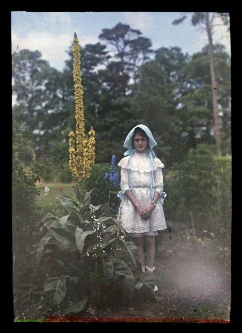 Garden Etheldra-Laing-autochrome-blue-bonnet Iris L 1910