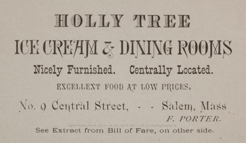 Ice Cream Holly Tree