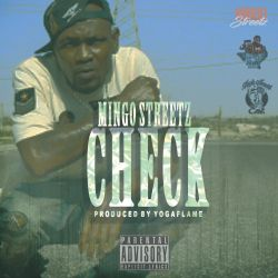 "[Single] Mingo Streetz ""Check"""