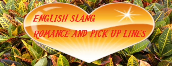 English Slang- Romance and Pick Up Lines as found on Street Talk Savvy