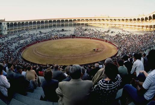 Spanish Bullfight
