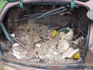 04.Inside the trunk, the nest from a family of rats that had lived in the car for at least 20 years. We found oil and beer cans that dated to the late '70s. This mess is literally 3 foot deep in places. And this emaciated rat was still in the trunk…. Gross. A simple inspection would have fixed this. The entire floor pan, firewall to trunk lid had to be replaced.