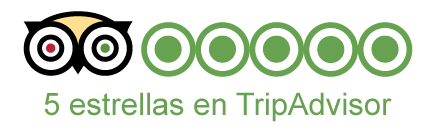 Tripadvisor 5 estrellas para tour de Manhattan de Streetwise NY