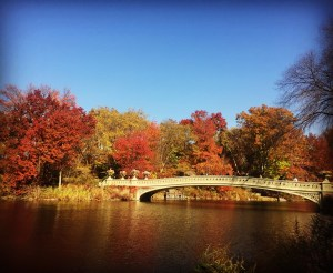 Central Park's Bow Bridge With Fall Foliage