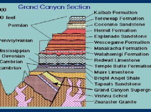 Section - Grand - Canyon
