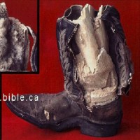 Fig.3 - Fossilized Cowboy Boot