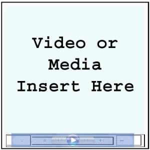 Insert Video Image