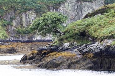 Loch Euphoirt, North Uist