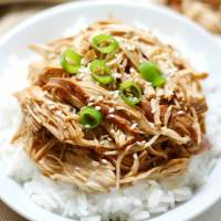 Slow Cooker Teriyaki Chicken (Gluten-Free, Allergy-Free, Paleo)