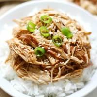 Slow Cooker Teriyaki Chicken (Gluten-Free, Allergy-Free, Paleo)
