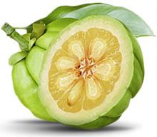 garcinia-cambogia-fruit