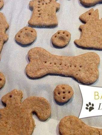 Banana Dog Treats