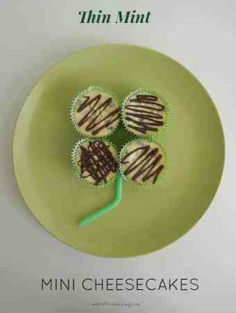 Thin Mint Mini Cheesecakes