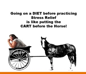 dieting before addressing stress is like putting the cart in front of the horse