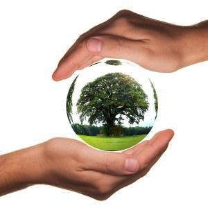 環境保全と私たちができること