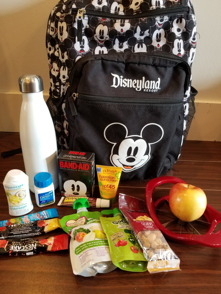 Packing for a day in Disney: the backpack