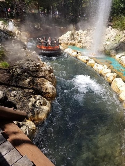 Grizzly Rapids