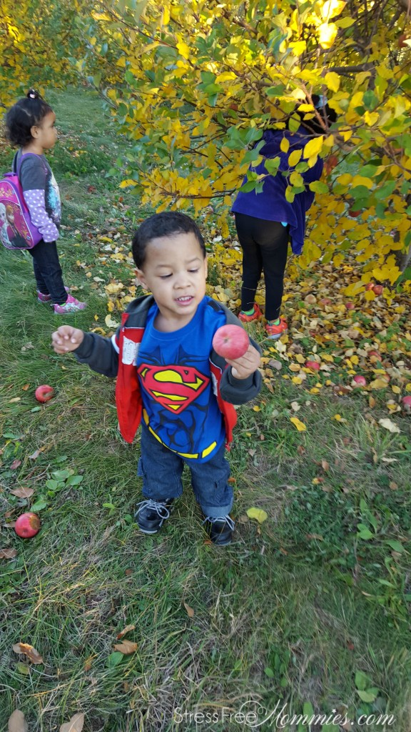 baby boy apple picking