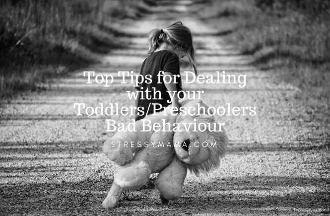 Top Tips for Dealing with your Toddlers/Preschoolers Bad Behaviour