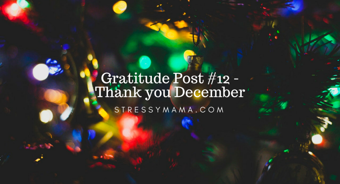 Gratitude Post #12 - Thank you December