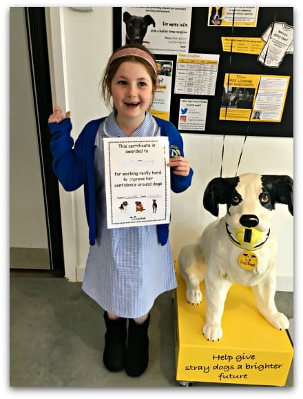 A well-deserved certificate for completing the Building Confidence Around Dogs Course