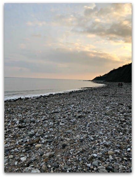 An evening spent fossil hunting in Lyme Regis