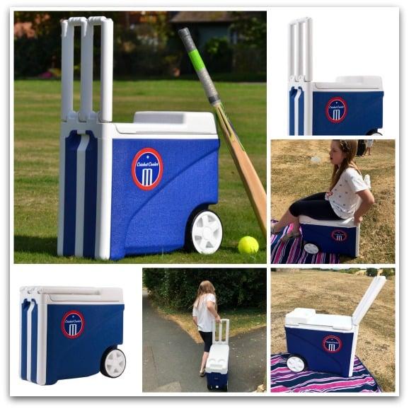 Cricket Cooler 33L from Wayfair