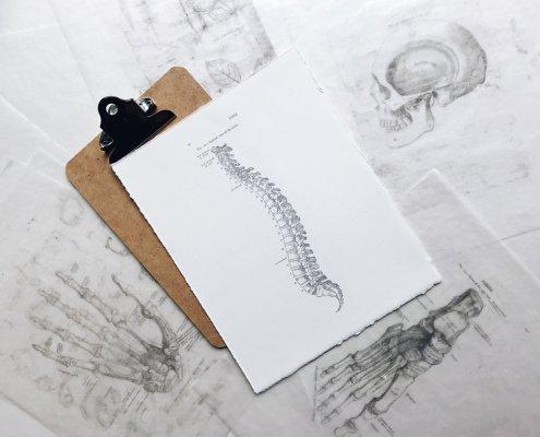 stretchingpro-comment-soigner-les-douleurs-de-dos-et-de-la-colonne-vertebrale