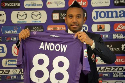 anderson andow