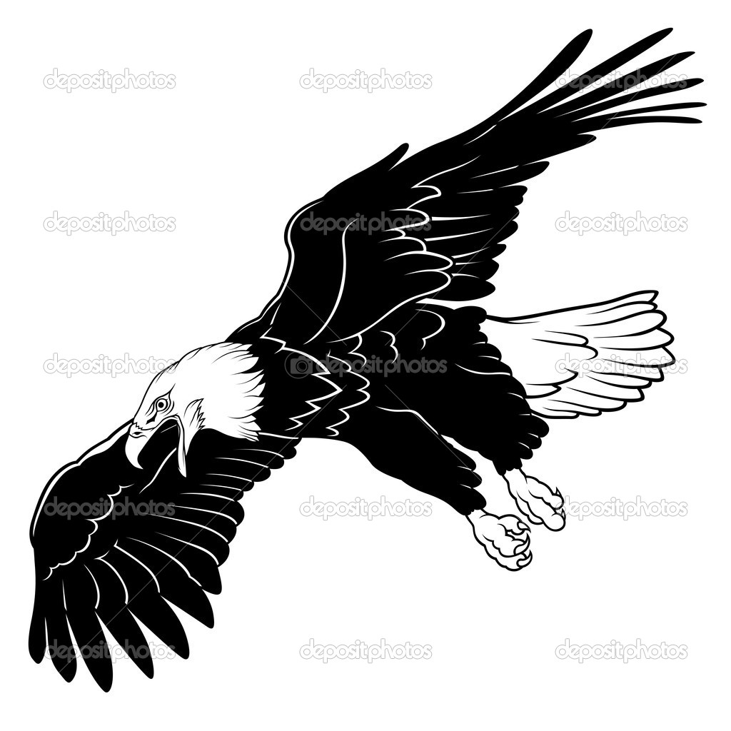 Soaring Bald Eagle coloring page | Free Printable Coloring Pages | 1024x1024