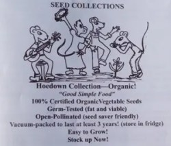 Hoedown Seed Collection, 12 packs of open-pollinated vegetable seeds, Organic