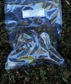 Spilanthes (Acmella oleracea), flowering tops, dried, 50 g packet, organic