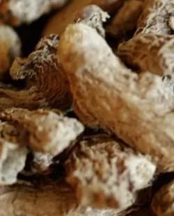 Ginger (Zingiber officinalis), dried, tea cut, 50 g packet
